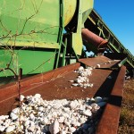 Aggitator_rough_opal_process_australia_nsw_outback_mining